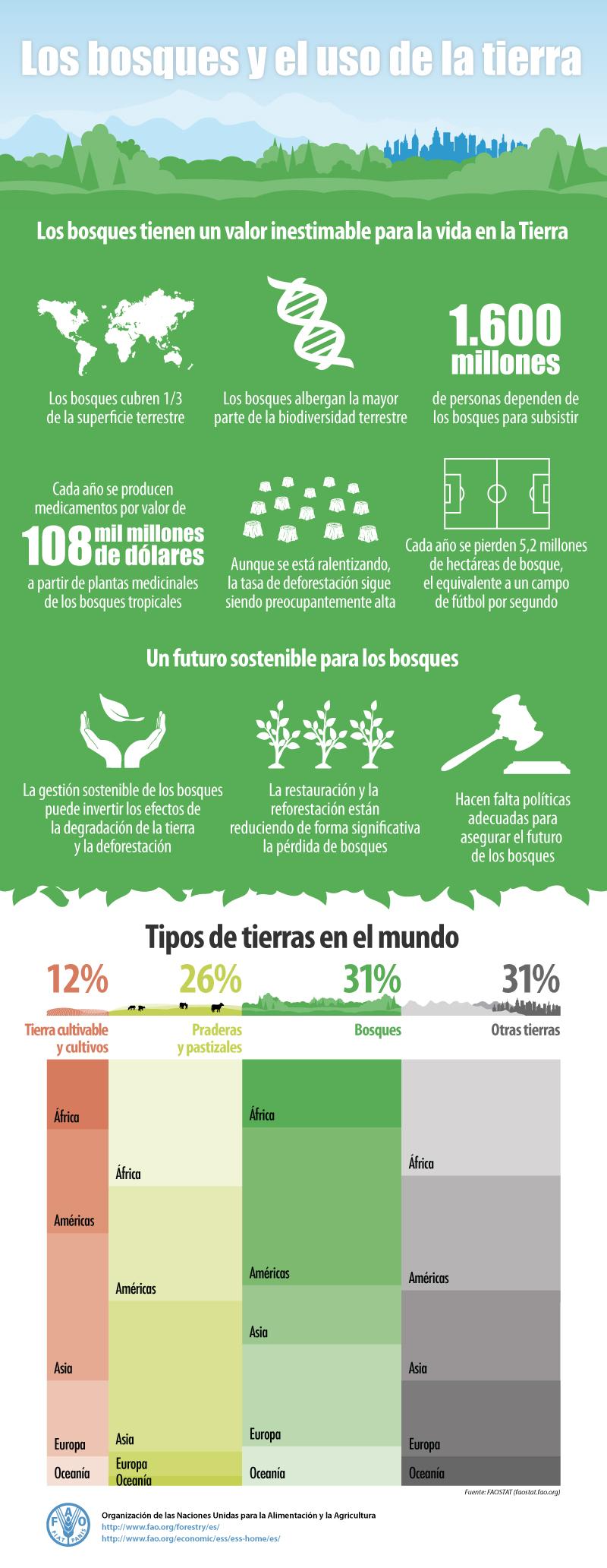 Forestry_infografica_Spanish