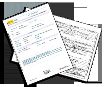 baja-certificado